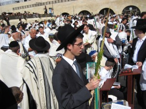 Lulav shaking at the kotel.  They wouldn't let me on the men's side, but my long arms can reach over the mechitzah...